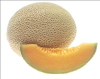 cantaloupe_credit_national_cancer_institute_Renee Comet (photographer) pd